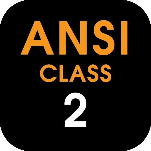/ansi-class-2-orange Icon