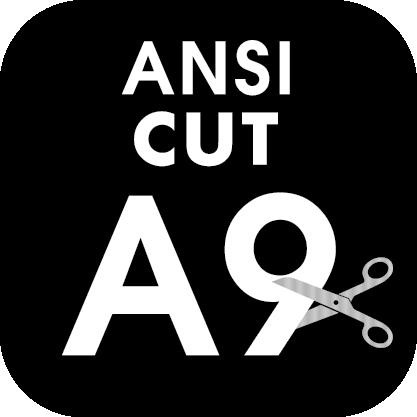 ANSI Cut Level A9 Icon