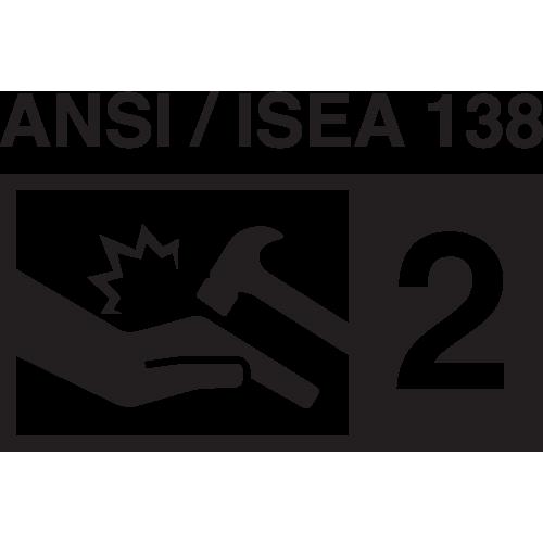 /ansi-isea-138-level-2 Icon