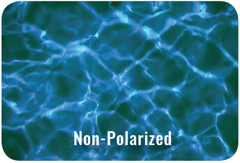 Non Polarized Example